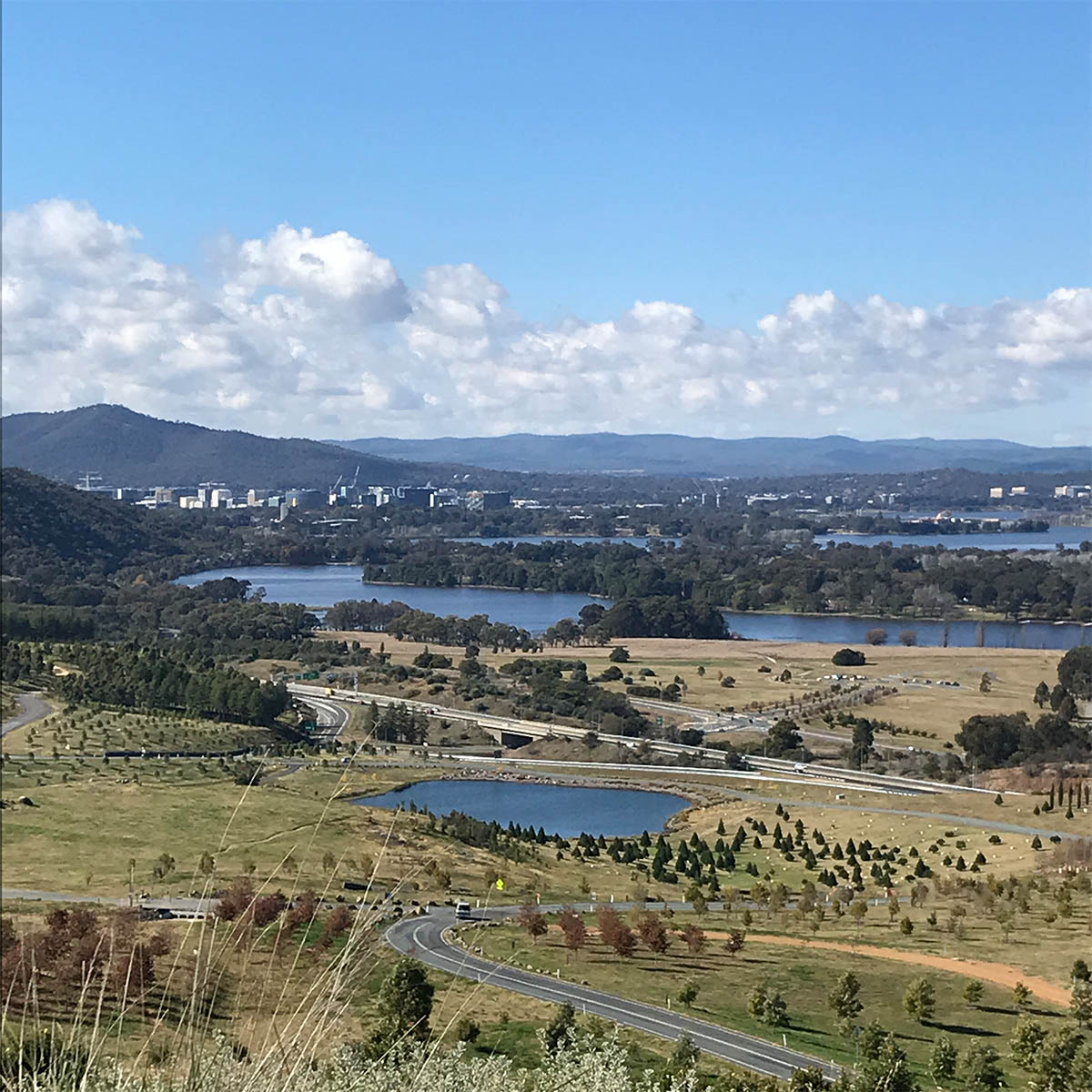 Canberra in a nutshell (or a mushroom cap)